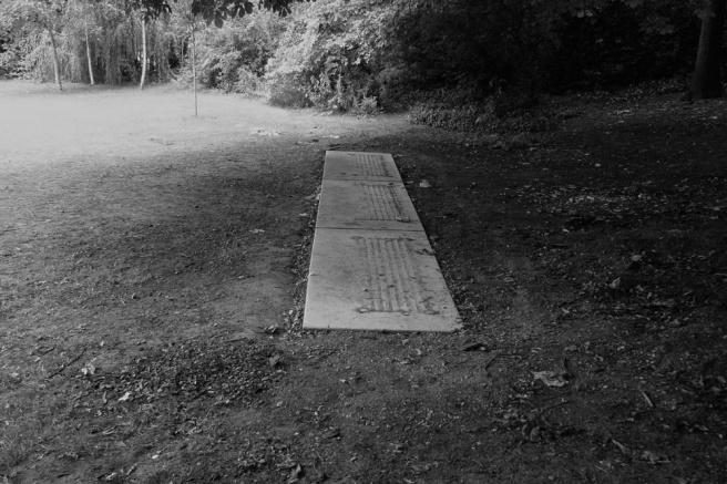 path30.jpg